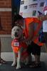 Daisy gets set to greet folks at Meet The Mascot