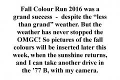Fall Colour Run